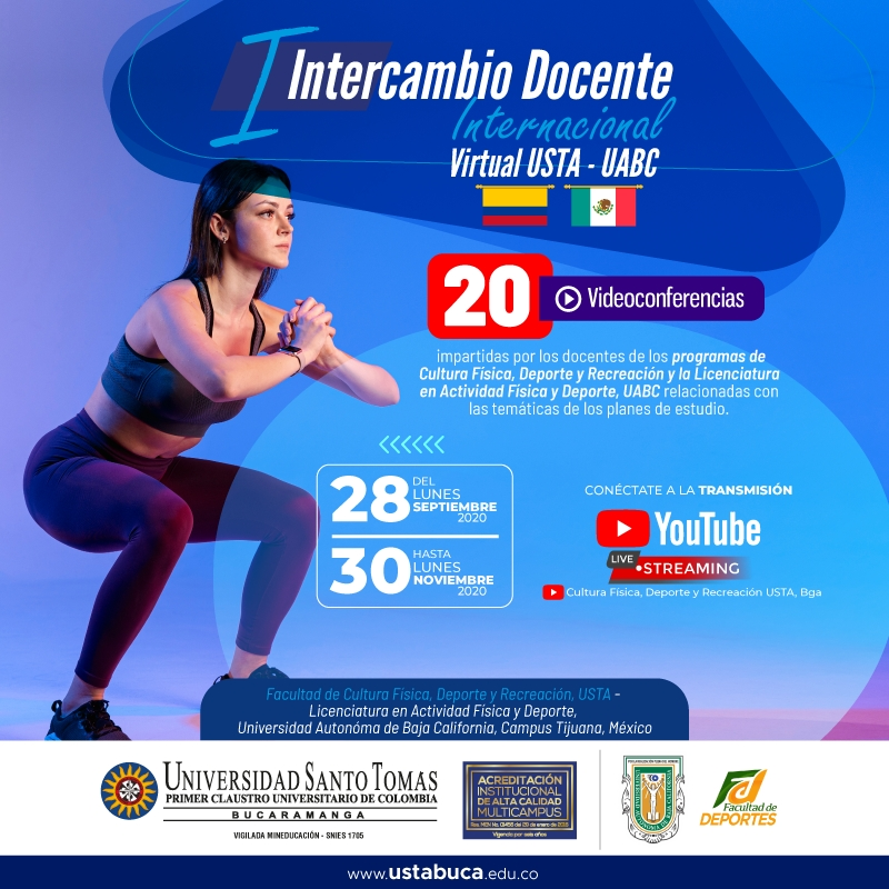 Intercambio Docente Internacional Virtual